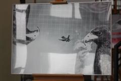 F16_wystawa (3)